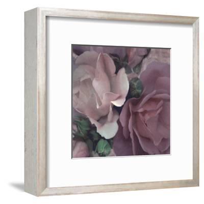 Parfum II-S^ G^ Rose-Framed Art Print