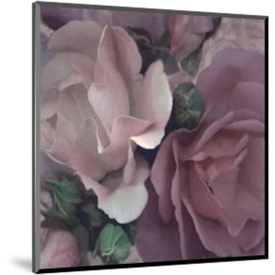 Parfum II-S^ G^ Rose-Mounted Art Print