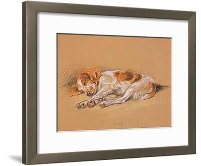 Judy, a Spaniel Puppy-Mac-Framed Art Print
