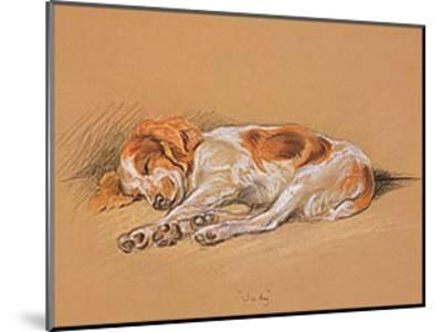 Judy, a Spaniel Puppy-Mac-Mounted Art Print