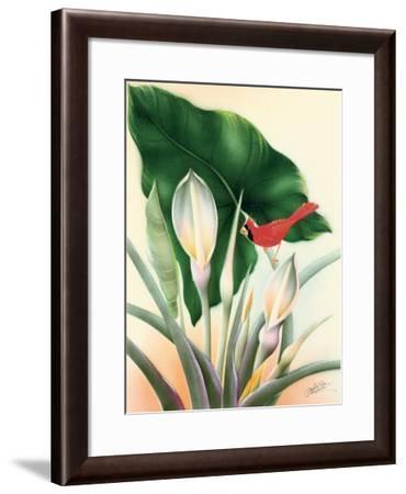 Hawaiian Red Cardinal, c.1940s-Frank Oda-Framed Giclee Print