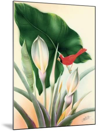 Hawaiian Red Cardinal, c.1940s-Frank Oda-Mounted Giclee Print