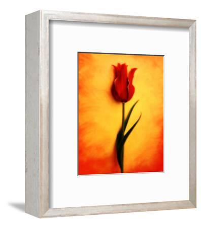Tulip III-Christine Zalewski-Framed Art Print