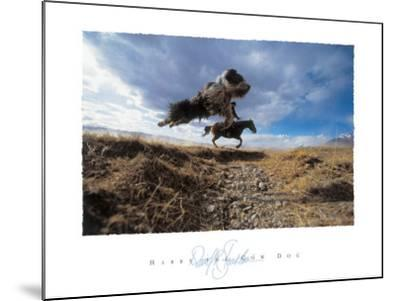 Harry the Cow Dog-David R^ Stoecklein-Mounted Art Print