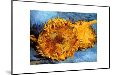 Two Cut Sunflowers C 1887 Giclee Print By Vincent Van Gogh Art Com
