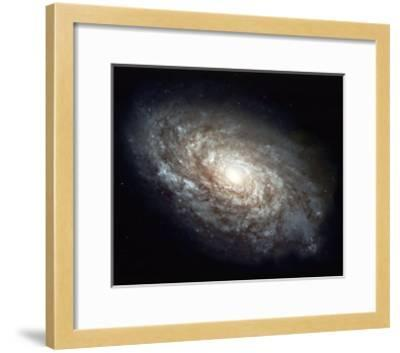 Find Your Strength--Framed Giclee Print