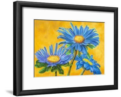 Blue Asters-M^ De Flaviis-Framed Art Print