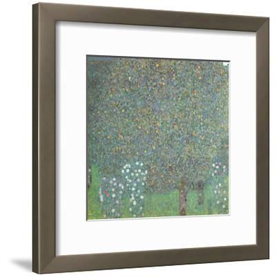 Roses under the Trees-Gustav Klimt-Framed Art Print