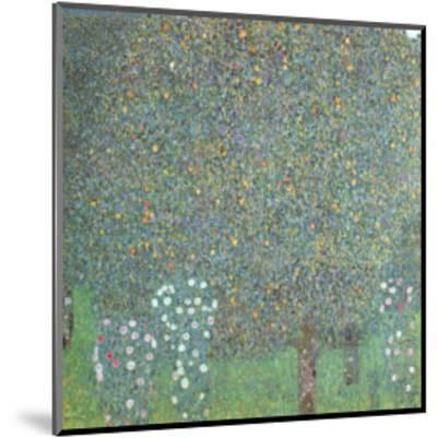 Roses under the Trees-Gustav Klimt-Mounted Art Print
