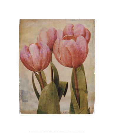 Cheri-Linda Maron-Framed Art Print