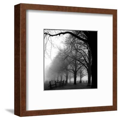 Black and White Morning-Harold Silverman-Framed Art Print