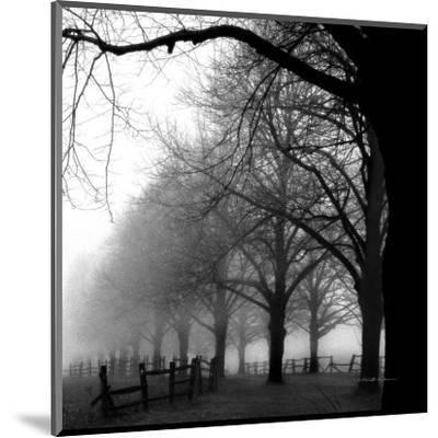 Black and White Morning-Harold Silverman-Mounted Art Print
