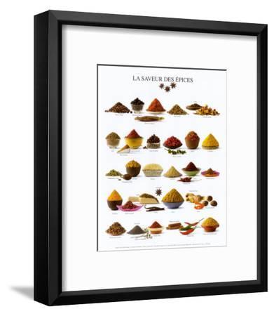 Spices--Framed Art Print