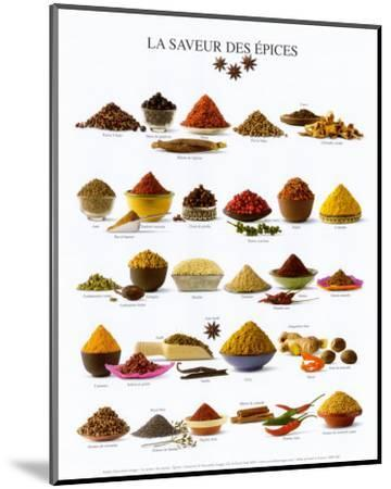 Spices--Mounted Art Print