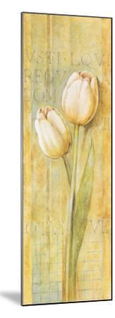 Quiet Flowers II-Herve Libaud-Mounted Art Print