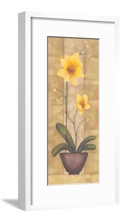 Melodic Orchid IV-Urpina-Framed Art Print
