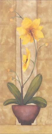 Melodic Orchid VI-Urpina-Framed Art Print