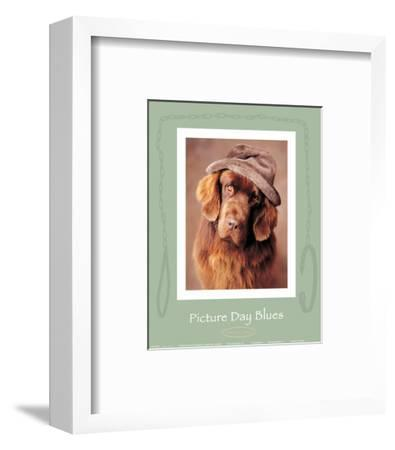 Picture Day Blues-Rachael Hale-Framed Art Print