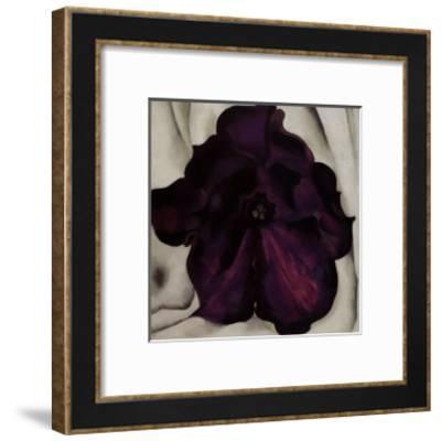 Purple Petunia, 1925-Georgia O'Keeffe-Framed Art Print