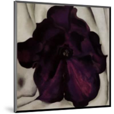 Purple Petunia, 1925-Georgia O'Keeffe-Mounted Art Print