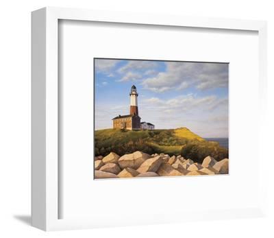 Turtle Cove Hill-Daniel Pollera-Framed Art Print