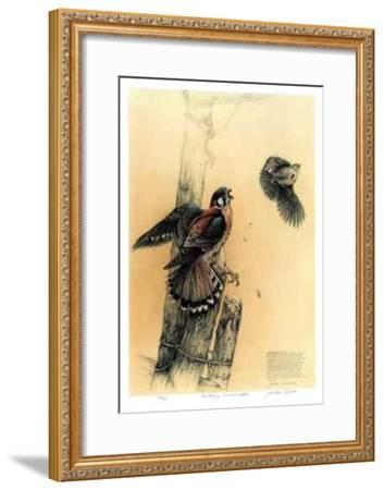 The Getaway - American Kestrel-Michael Dumas-Framed Limited Edition