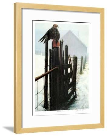 Borderline - Red Tailed Hawk-Michael Dumas-Framed Limited Edition