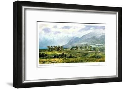 Afternoon Colours-Catherine Perehudoff-Framed Limited Edition