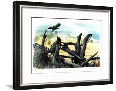 Hawk's Country-Leslie A. Parks-Framed Limited Edition