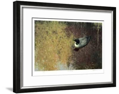 Loon Tapestry-Claudio D'Angelo-Framed Collectable Print