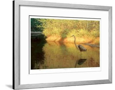 Spring Reflections-Claudio D'Angelo-Framed Collectable Print