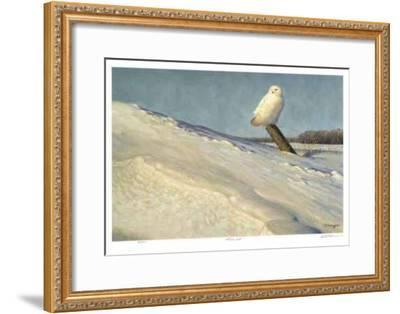 White Owl-Claudio D'Angelo-Framed Collectable Print
