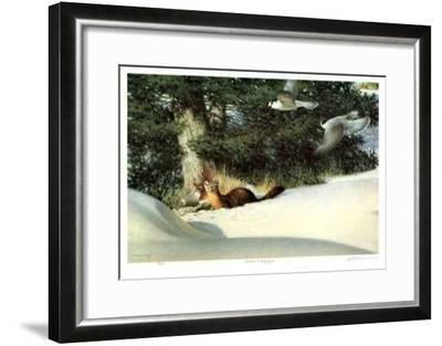 Martin and Grey Jays-Claudio D'Angelo-Framed Limited Edition