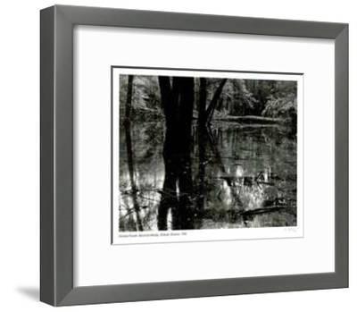 Bacchus Woods - Simcoe, Ontario-Simeon Posen-Framed Limited Edition