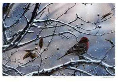 Winter is Upon Us-J. Vanderbrink-Framed Collectable Print