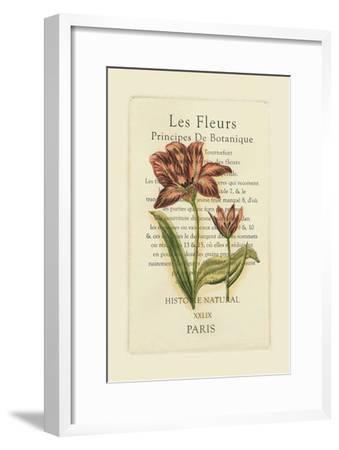 Le Fleurs Botanique II--Framed Art Print