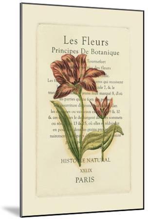 Le Fleurs Botanique II--Mounted Art Print