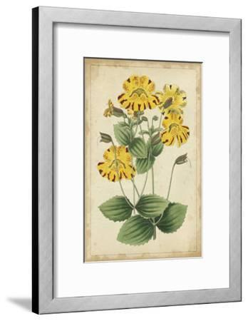 Curtis Blooms in Yellow I--Framed Art Print