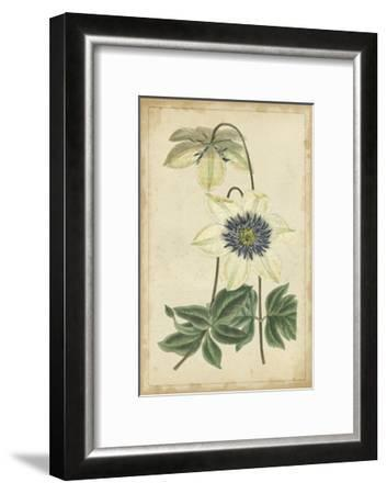 Curtis Blooms in White I--Framed Art Print