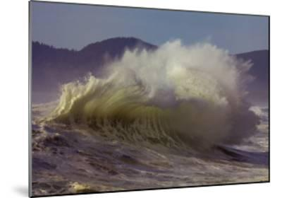 Purpose: Wave-Craig Tuttle-Mounted Art Print