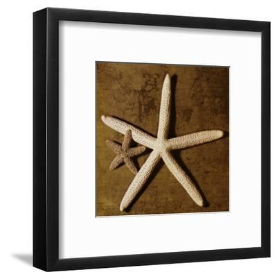 Starfish-Caroline Kelly-Framed Art Print