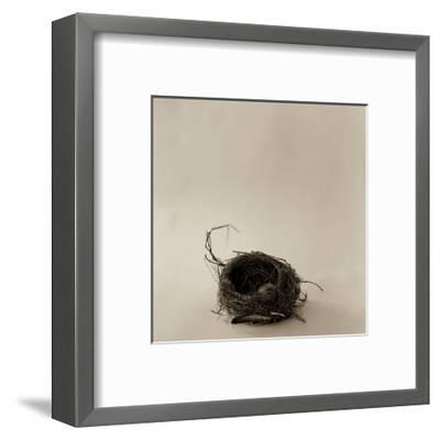 A La Curtis-Ruth Silverman-Framed Art Print