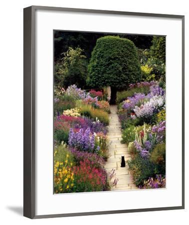 The Garden Cat Greg Gawlowski Framed Art Print