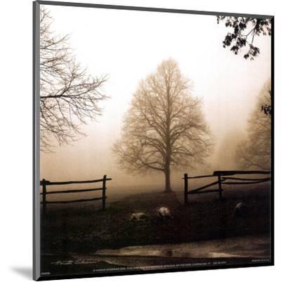 Morning Texture-Harold Silverman-Mounted Art Print