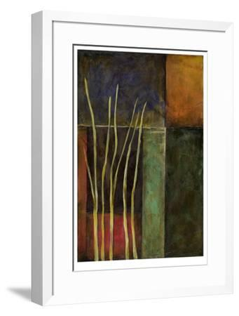 Zen Garden II-Jennifer Goldberger-Framed Limited Edition