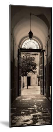 Portico, Espana-Alan Blaustein-Mounted Art Print