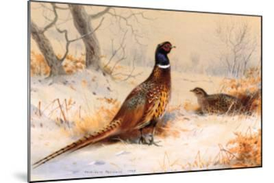 Cock and Hen Pheasant-Archibald Thorburn-Mounted Art Print
