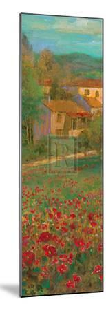 Provencal Village VI-Michael Longo-Mounted Art Print