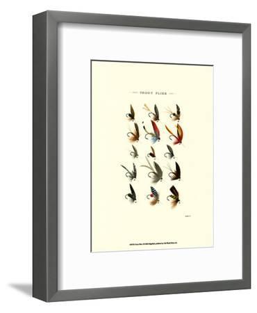 Trout Flies I--Framed Art Print