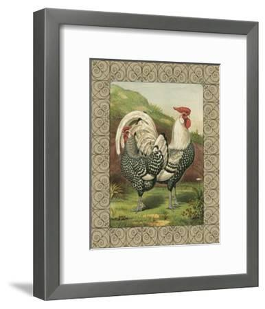 Roosters III-Cassell's Poultry Book-Framed Art Print